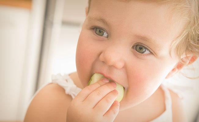 Cuidando la alimentación de tu bebé. Etapa 18 a 21 meses